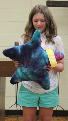 Abigail Cronise - Star Pillow